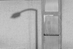 Kate Brogdon