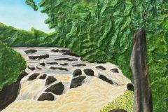 """""""Landscape Rapids"""""""