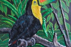 """""""Relation of the Keel-billed Toucan and the Amazon"""""""