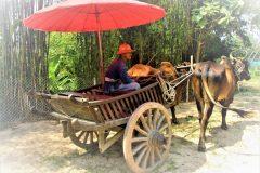 """""""Summer Along the Mekong"""""""