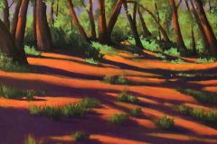 """""""Shadows in the Clearing"""""""