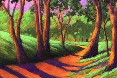 """""""Shady Path"""""""