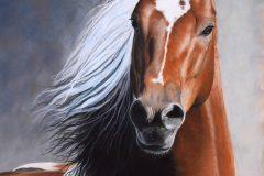 """""""Flyaway Horse"""""""