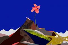 """Tundra Flower"""