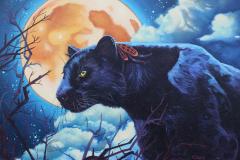 """Night watcher black panther"""