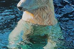 """Floating polar bear"""